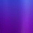 Iris Purple (2)